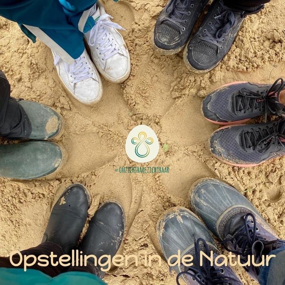 Opstellingen in de Natuur ~ Logo